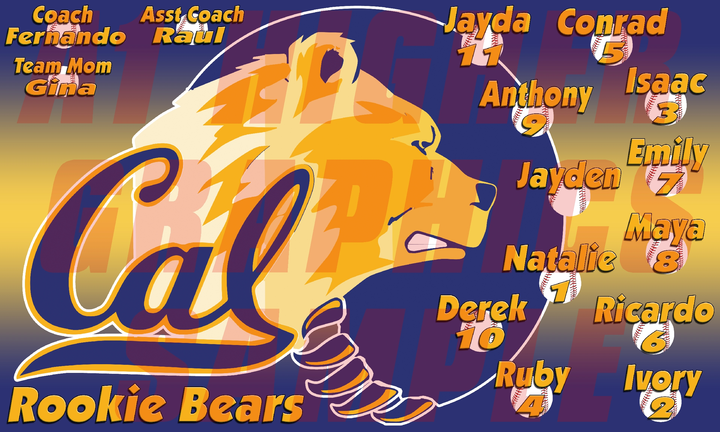 Cal Rookie Bears Banner