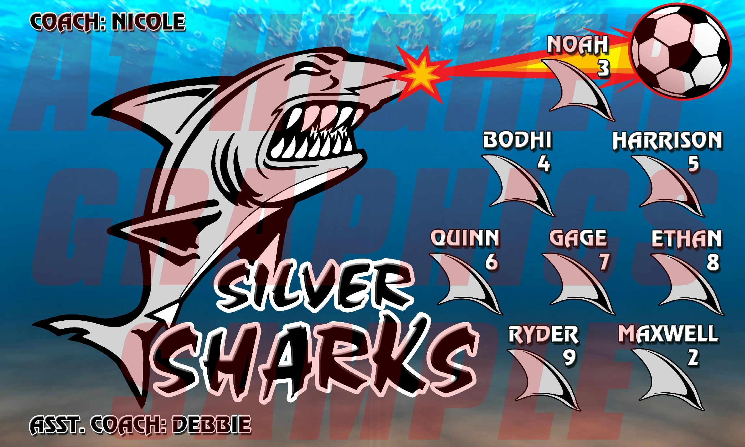 Silver Sharks Banner